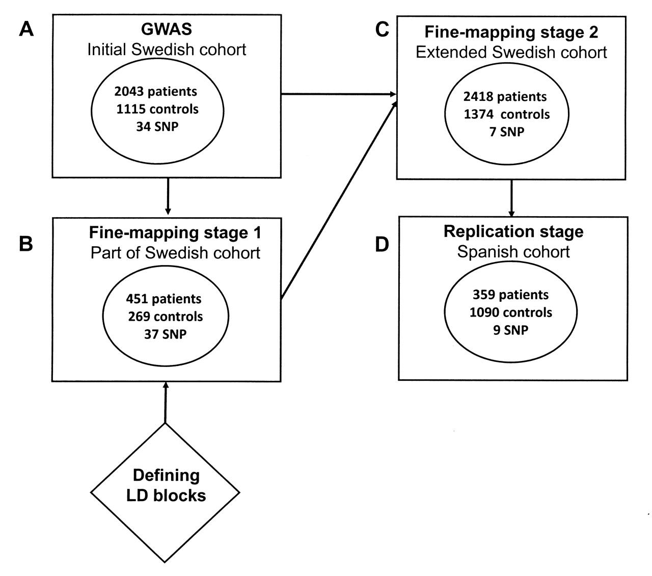 Variants Within Stat Genes Reveal Association With Anticitrullinated Protein Antibody Negative Rheumatoid Arthritis In 2 European Populations The Journal Of Rheumatology
