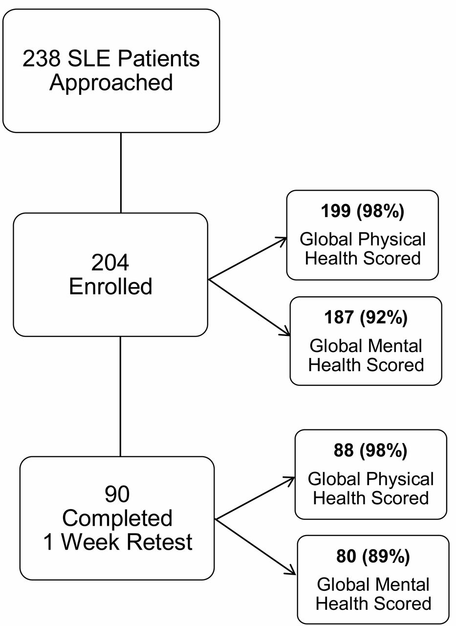 feasibility validity and reliability of the 10 item patient