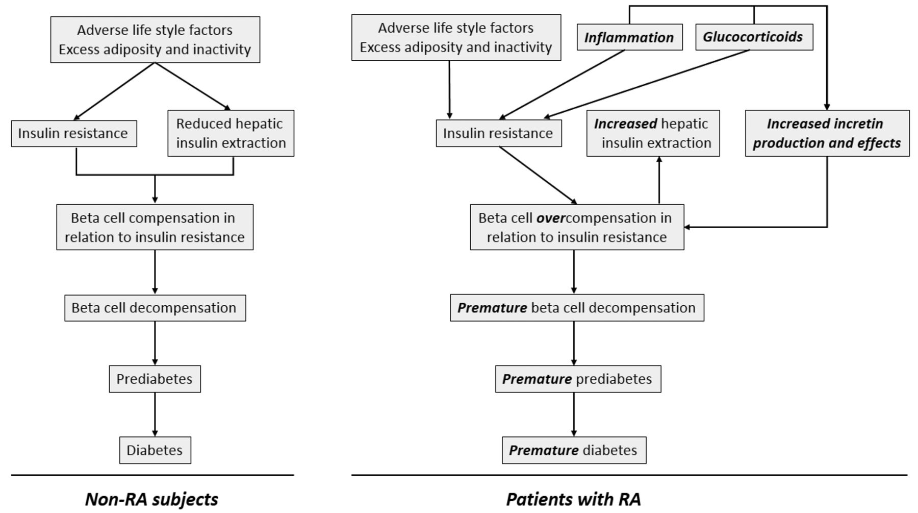 Diabetogenesis in Rheumatoid Arthritis: Do Inflammation and