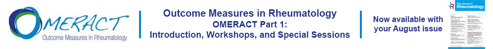 Link to OMERACT Supplement Part 1.
