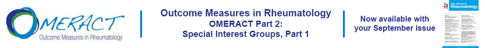Link to OMERACT Supplement Part 2