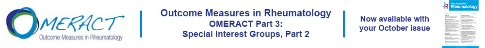 Link to OMERACT Supplement Part 3.